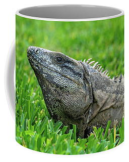 Iguana In Grass Coffee Mug