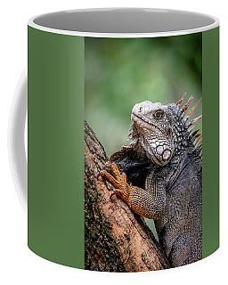 Iguana's Portrait Coffee Mug