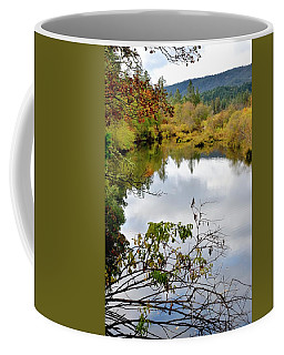 Coffee Mug featuring the photograph Illinois River Pool by Jerry Sodorff