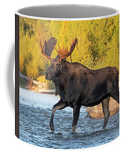 Coffee Mug featuring the photograph In His Stride by Mary Hone