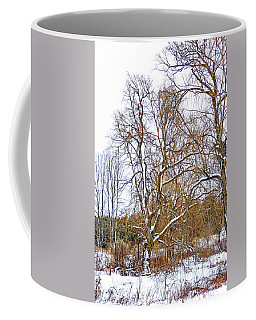 In Praise Of Willows 4 Coffee Mug