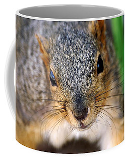 In Your Face Fox Squirrel Coffee Mug