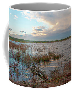 Incoming In The New Jersey Pine Barrens Coffee Mug