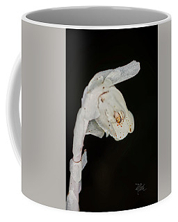 Indian Pipe Rabbit Head Coffee Mug