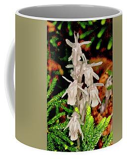 Indian Pipes On Club Moss Coffee Mug