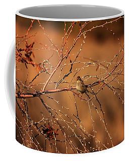 Inhospitable Coffee Mug