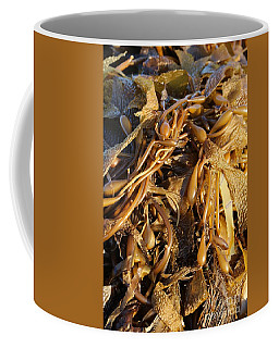 Interesting Kelp Coffee Mug
