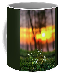 Into Dreams Coffee Mug