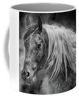 Coffee Mug featuring the photograph Into The Mist by Mary Hone