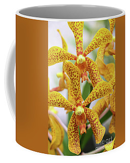 Intriguing Yellow Spider Orchids Coffee Mug