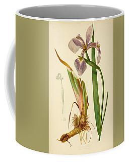 Iris Versicolor Blue Flag Coffee Mug