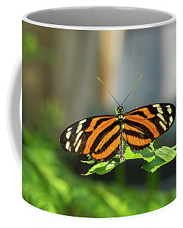Isabella Longwing Butterfluy Coffee Mug