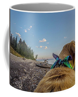 Coffee Mug featuring the photograph Jackson Lake By Photo Dog Jackson by Matthew Irvin