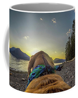 Coffee Mug featuring the photograph Jackson Lake Sunset By Photo Dog Jackson by Matthew Irvin