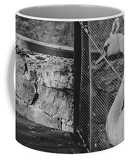 Jail Coffee Mug