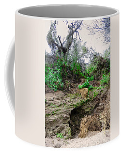 January Day  In The Vekol Wash Coffee Mug