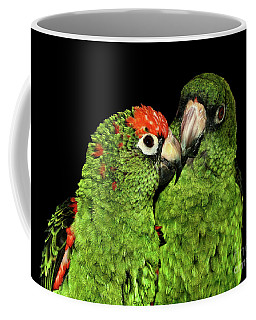 Coffee Mug featuring the photograph Jardine's Parrots by Debbie Stahre