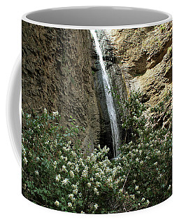 Jump Creek Falls Canyon Coffee Mug