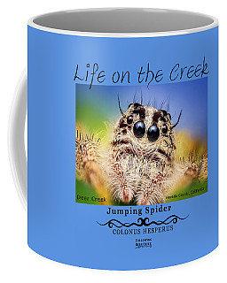 Jumping Spider Colonus Hesperus Coffee Mug