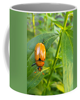 June Bug Coffee Mug