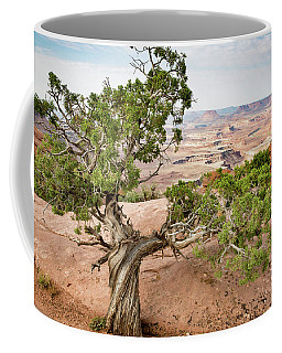 Juniper Over The Canyon Coffee Mug