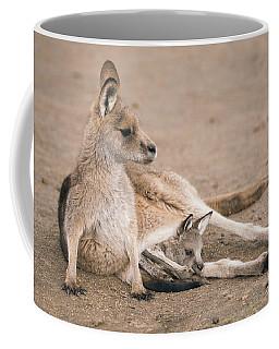 Kangaroo Outside Coffee Mug