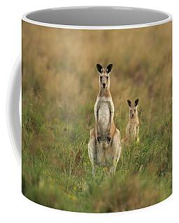 Kangaroos In The Countryside Coffee Mug
