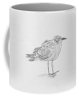 Kelp Gull Coffee Mug