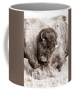 Coffee Mug featuring the photograph Kicking Up The Dirt by Mary Hone