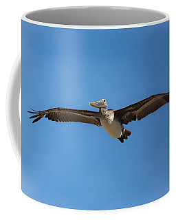Coffee Mug featuring the photograph Kill Devil Pelican by Lora J Wilson