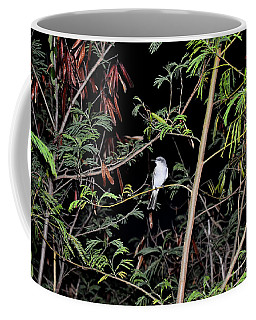 Kingbird At Night Coffee Mug