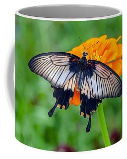Kite Swallowtail  Coffee Mug