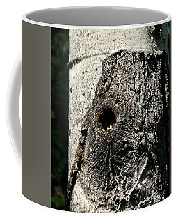 Knot Hole Nest Coffee Mug