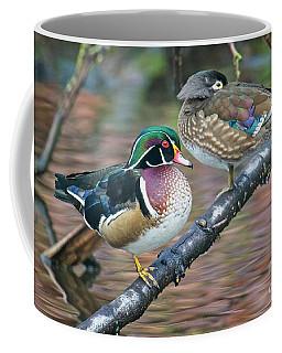 Kodachrome Ducks Coffee Mug