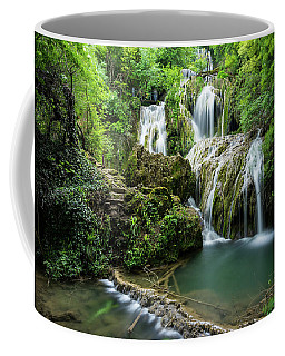 Krushunski Waterfalls Coffee Mug