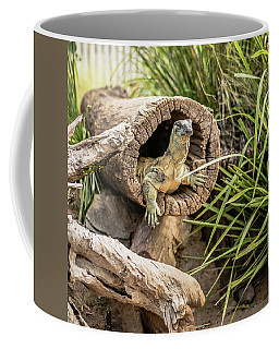 Lace Monitor During The Day. Coffee Mug