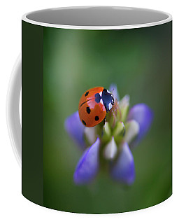 Coffee Mug featuring the photograph Lady Bug by John Rodrigues