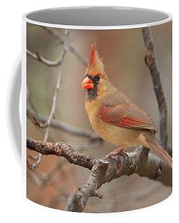 Lady Cardinal Coffee Mug