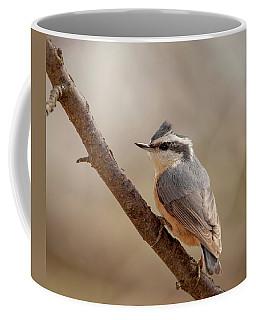 Lady Red-breasted Nuthatch Coffee Mug