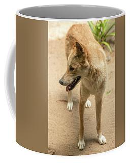 Large Australian Dingo Outside Coffee Mug