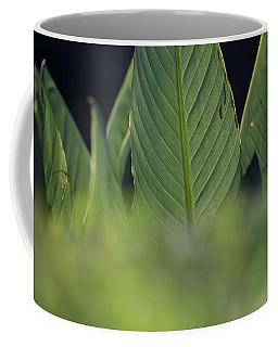 Large Dark Green Leaves Coffee Mug