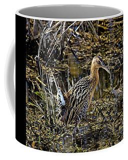 Largest North American Rail Coffee Mug