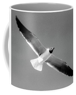 Laughing Seagull Coffee Mug