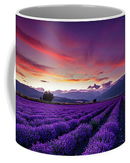 Lavender Season Coffee Mug