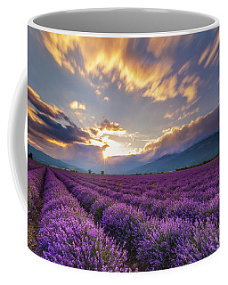 Lavender Sun Coffee Mug