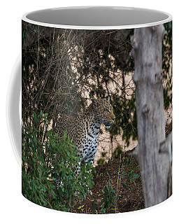 Coffee Mug featuring the photograph LC1 by Joshua Able's Wildlife