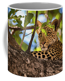 Coffee Mug featuring the photograph Lc11 by Joshua Able's Wildlife