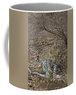 Coffee Mug featuring the photograph LC2 by Joshua Able's Wildlife
