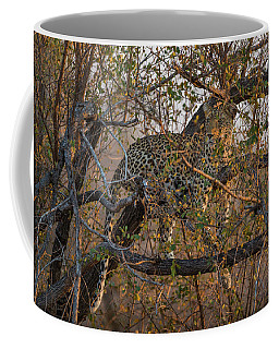 Coffee Mug featuring the photograph LC6 by Joshua Able's Wildlife
