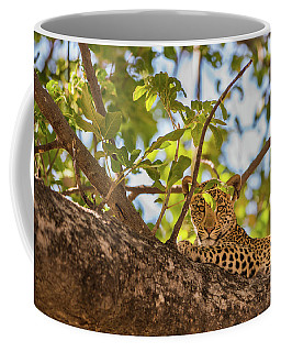 Coffee Mug featuring the photograph LC9 by Joshua Able's Wildlife